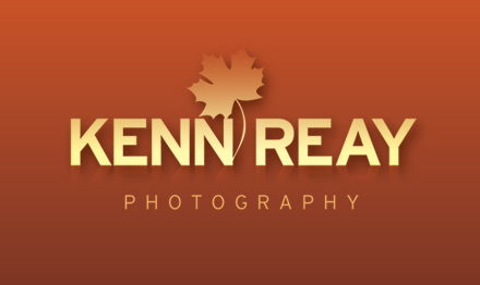 Branding design by Stripey Media for Kenn Reay Photography